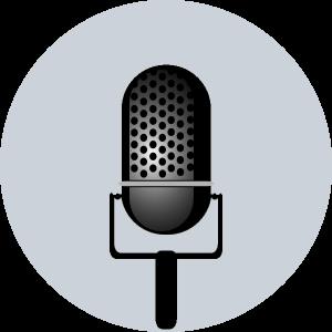 entertainment-microphone-gray